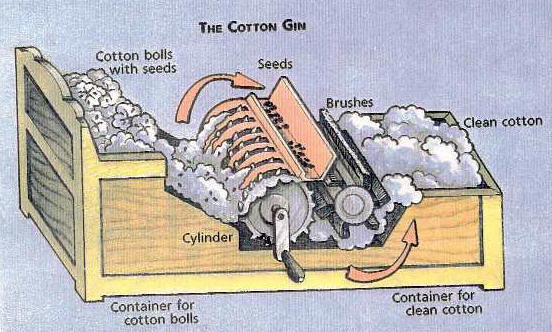essays over the cotton gin Read this essay and over 1,500,000 others like it now essays the cause of the the cause of the civil war: eli whitney's cotton gin.