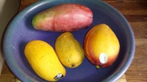 June Mangoes